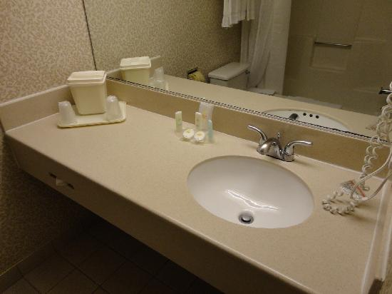 Comfort Inn and Suites Newark: Lavabo