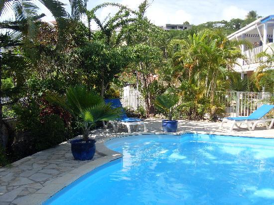 Le Gosier, Guadeloupe: piscine résidence Bleu Marine