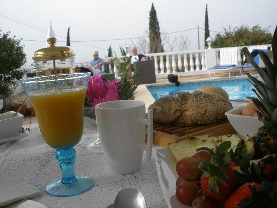 Winniehill Bed & Breakfast: Breakfast by the pool