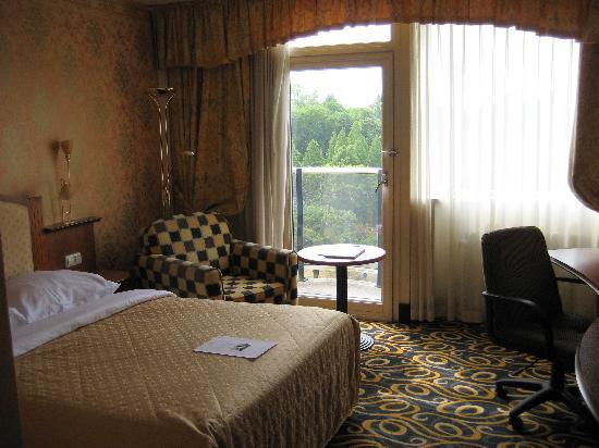 Carlton Square Hotel: Room