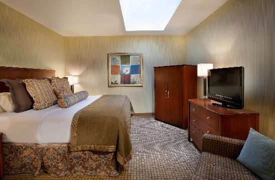 Embassy Suites by Hilton Indianapolis - Downtown: Carter Suite Bedroom