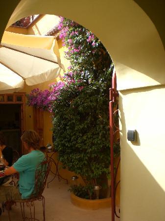 Hotel Moderne: le patio où l'on prend le petit déj avec bougainvilliers magnifiques