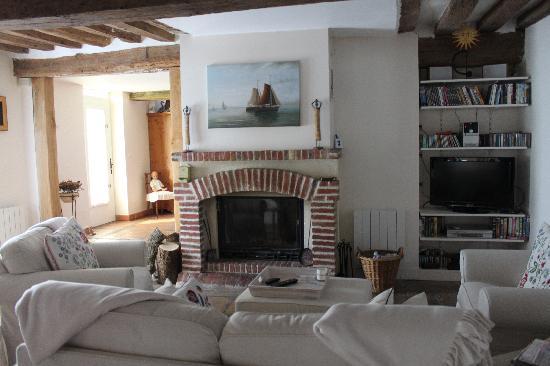 B&B Les Agapanthes : камин в гостиной