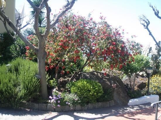 Giardini meravigliosi e splendidi panorami paradiso for Giardini meravigliosi