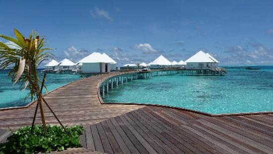 Diamonds Thudufushi: View towards beach villas