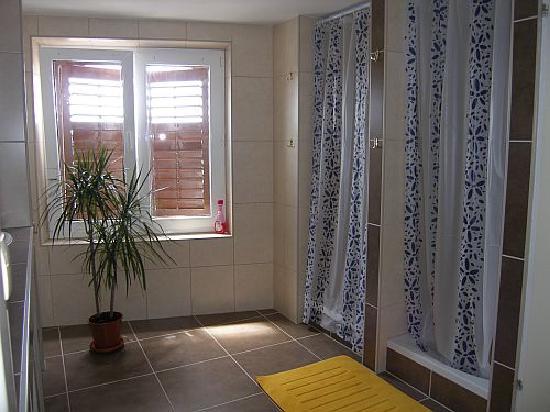 Indigo Hostel : Badezimmer