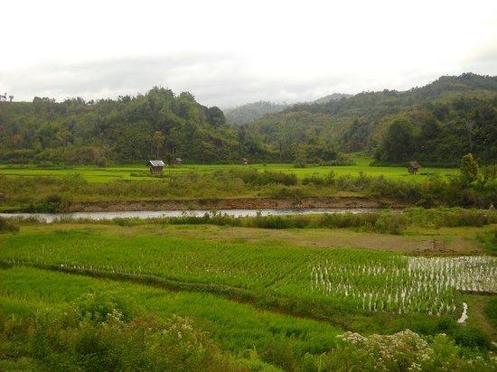 Jambi, Indonesia: Merangin
