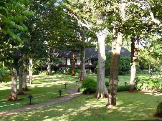 Safari Park Hotel: Safari Park view