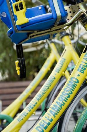 Hotel Dell' Amarissimo : Dell'Amarissimo Bike