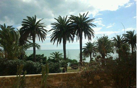 Residenza Isola: la vista dalle stanze