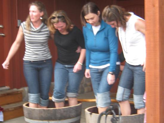 Marchesi Vineyards: Girls just want to have fun.