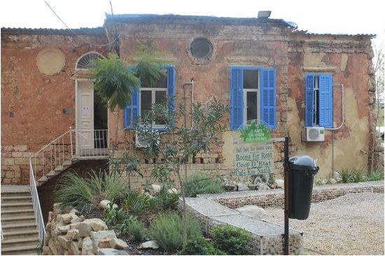 Saifi Urban Gardens: Front view