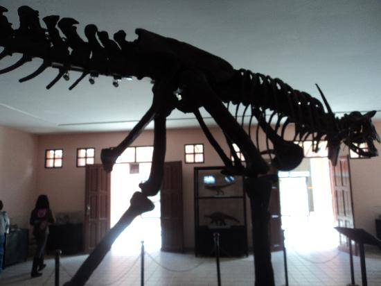 Sucre, Bolivya: Inside the museum