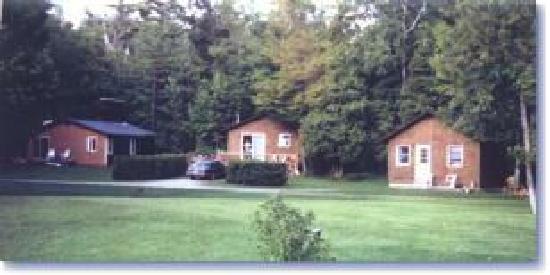 Cedar Lodge Resort: some cabin's