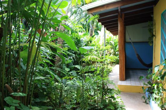 Hotel Guarana: Vegetazione