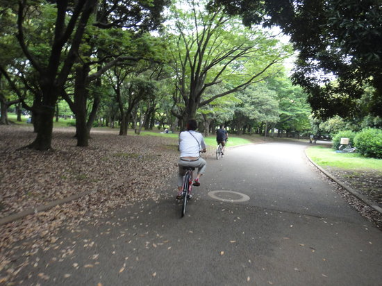 ‪ميغورو, اليابان: Cycling through Yoyogi park‬