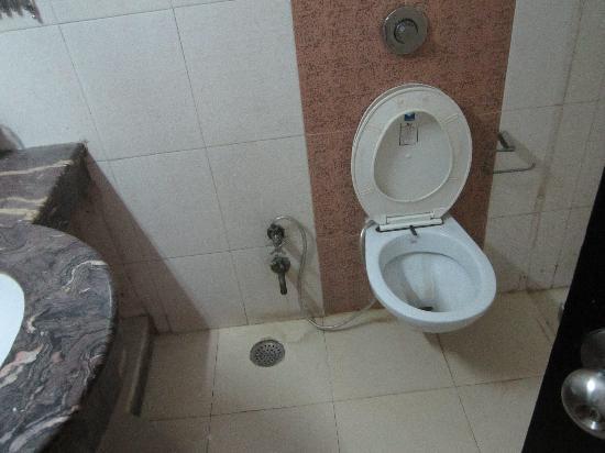 Hotel Delhi Heights: Bathroom