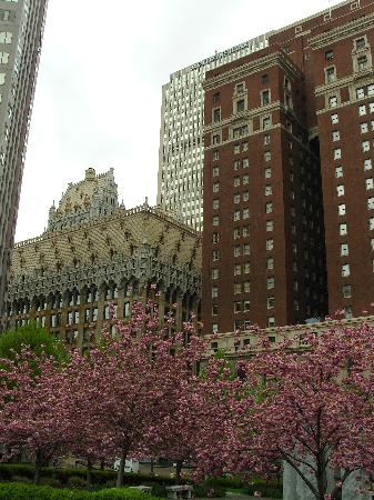 Omni William Penn Hotel: the hotel and environs