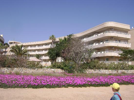 Palmera Beach Apartments: Hotel's view from the back