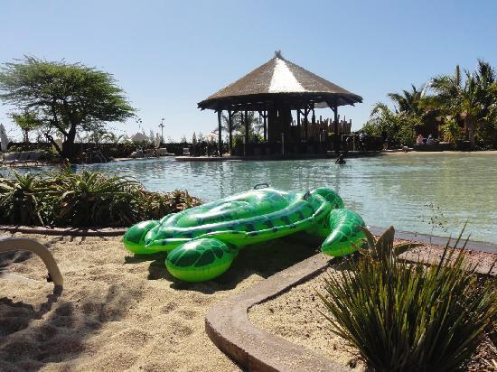 Lopesan Baobab Resort : The turtle was fun !