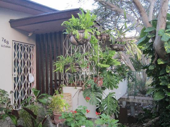 Casa Ileana Perez Valera: Entry to Casa de Ileana