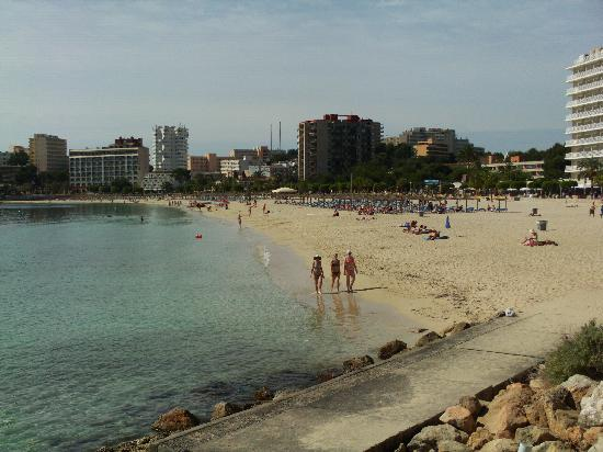 Alua Palmanova Bay : the beach