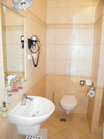 Hotel Maxi: Toilet