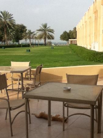 Dhafra Beach Hotel: close to the beach