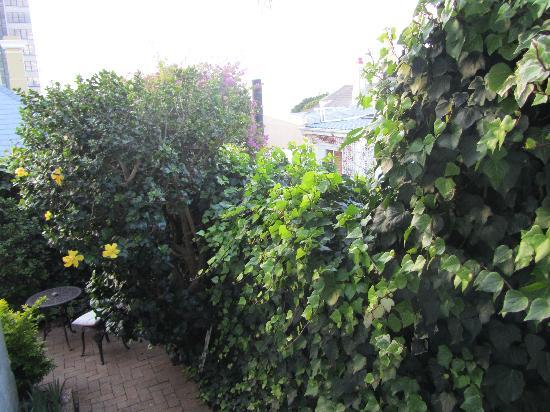 Blackheath Lodge : View from patio