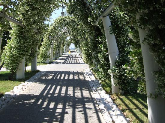 TUI Family Life Tropical Resort: Tunnel of Jasmine to Beach