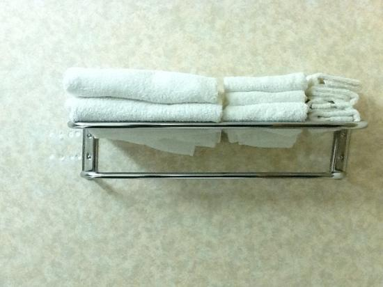 Comfort Inn : Towel Rack