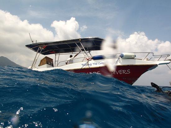 Ocean Dream Divers: Barca con la que se realizan las inmersiones
