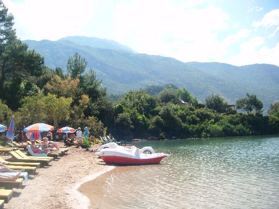 Ova Resort Hotel: the beach