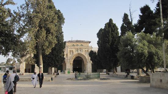 Mezquita de Al-Aqsa: Walking towards Masjid-ul-Aqsa