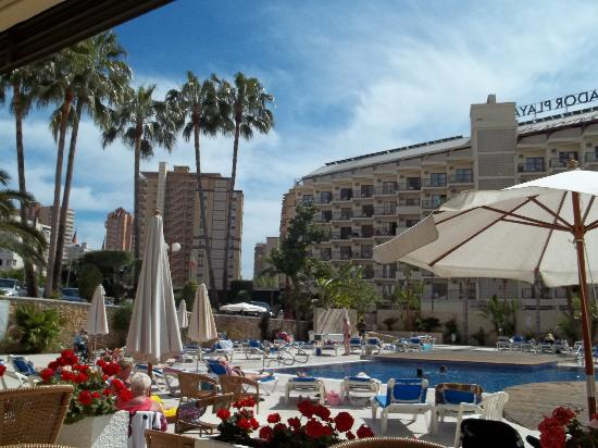 Hotel Rosamar: by the pool