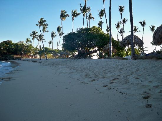 "Luxury Bahia Principe Cayo Levantado Don Pablo Collection: The ""windier"" beach"