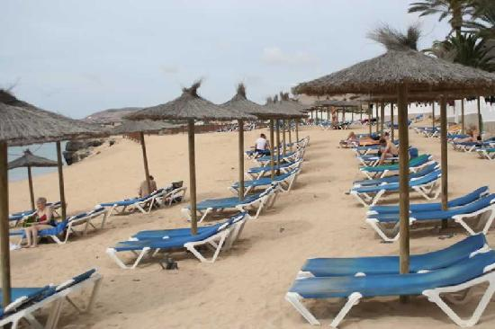 SBH Costa Calma Beach Resort : The beach