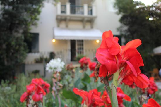 Hotel Club i Pini - Residenza D'Epoca : From the garden