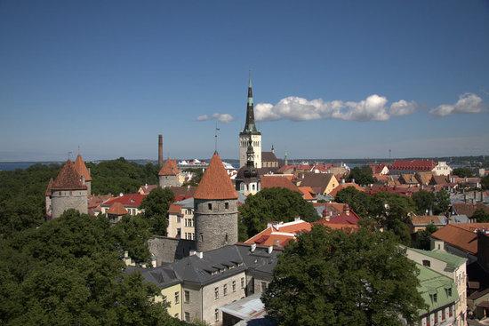 Domberg (Toompea)