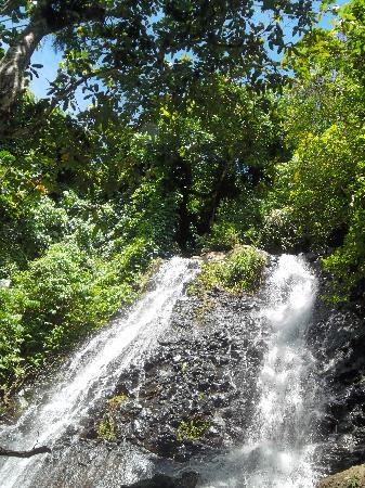 Royal Davui Island, Fiji: waterfall hike