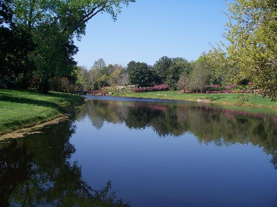 Bellingrath Gardens and Home: The lake