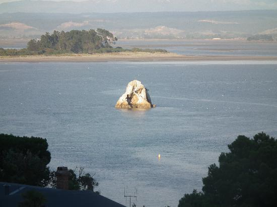 Harbour View Homestay: Fifeshire rock taken from the balcony