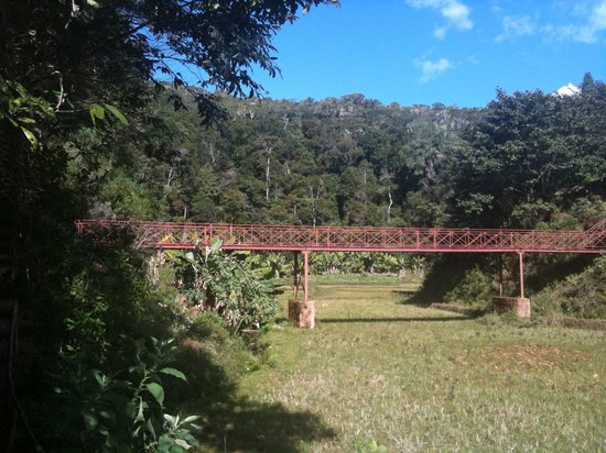 Saha Forest Camp: Bridge to enter forest lodge