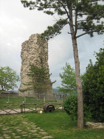 Agriturismo Borgo San Benedetto : Torre adiacente all'Agritursimo