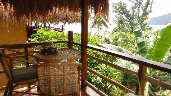 Treetops: your own private veranda