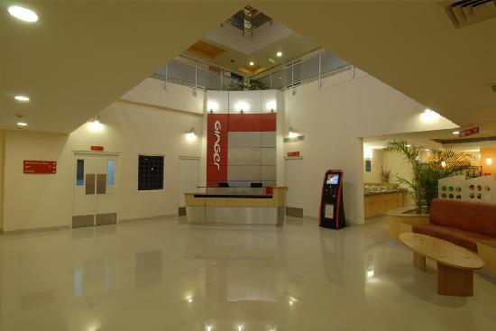 จิงเจอร์ นิวเดลี: reception