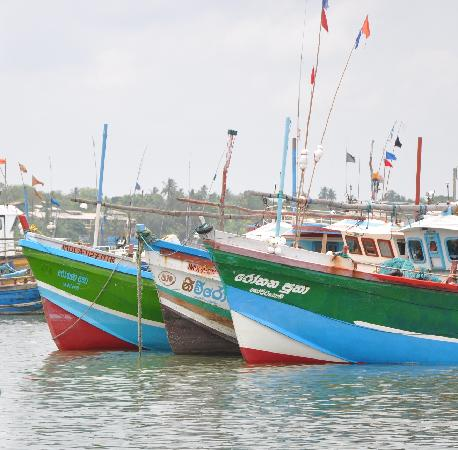 Boats at Tangalle harbour