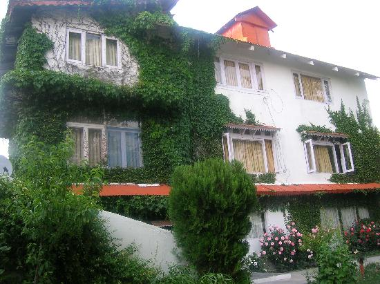 Alps Resort Dalhousie: Alps resort