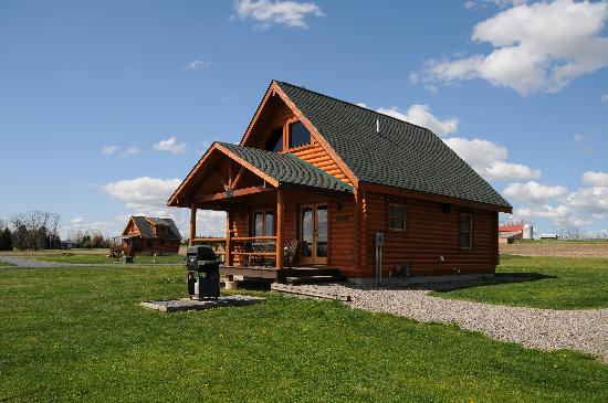 Cobtree Vacation Rental Homes Resort: Neighboring Cabin