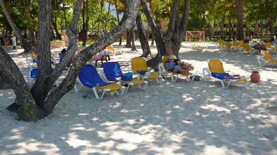 Iberostar Costa Dorada: la plage
